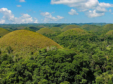 chocolate hills tour in Bohol